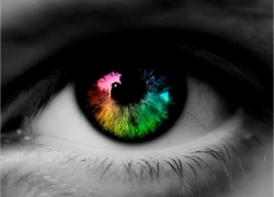 Profile picture for user PetyrB